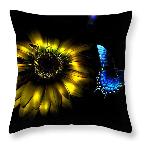 Flower Throw Pillow featuring the photograph Dark Glow Butterfly by Bob Welch