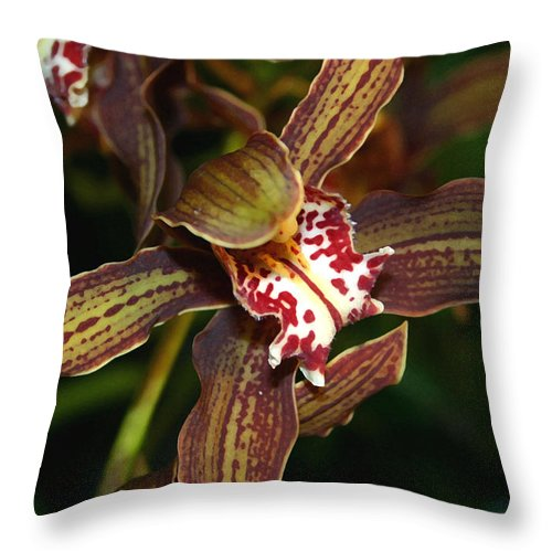 Orchid Throw Pillow featuring the photograph Dark Orchid by Mary Haber