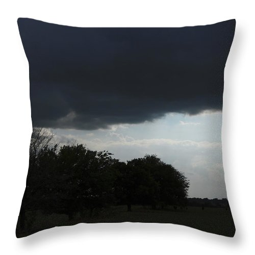Fine Throw Pillow featuring the photograph Darkened Horizons by Maggy Marsh