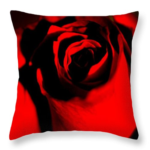 Rose Throw Pillow featuring the photograph Darkened Rose by Noah Cole