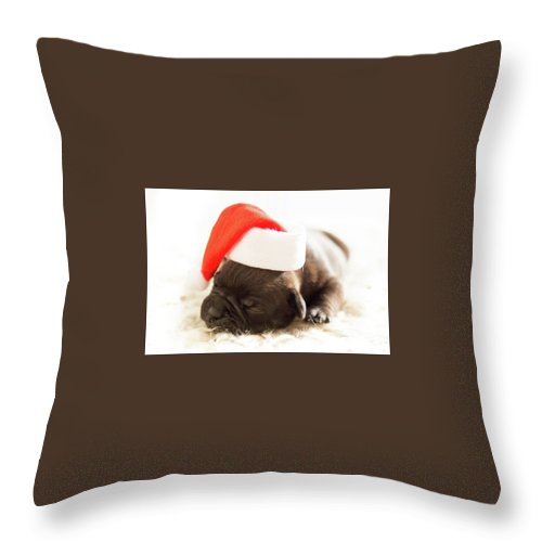 Throw Pillow featuring the digital art Darling by Craig
