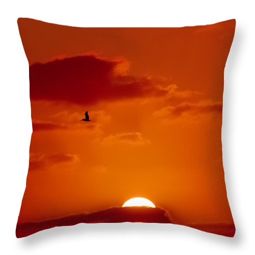 Pelican Throw Pillow featuring the digital art Dawn Flight by DigiArt Diaries by Vicky B Fuller