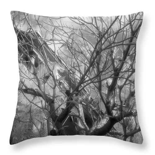 Infrared Photography Throw Pillow featuring the photograph Day Dream by Richard Rizzo