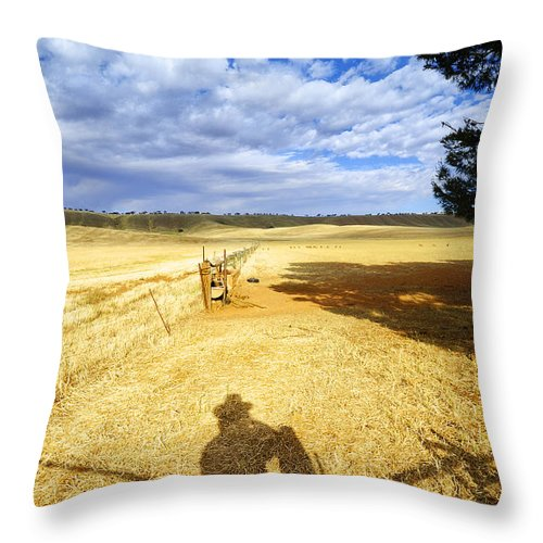 Landscape Throw Pillow featuring the photograph Day Dreaming by Wayne Sherriff