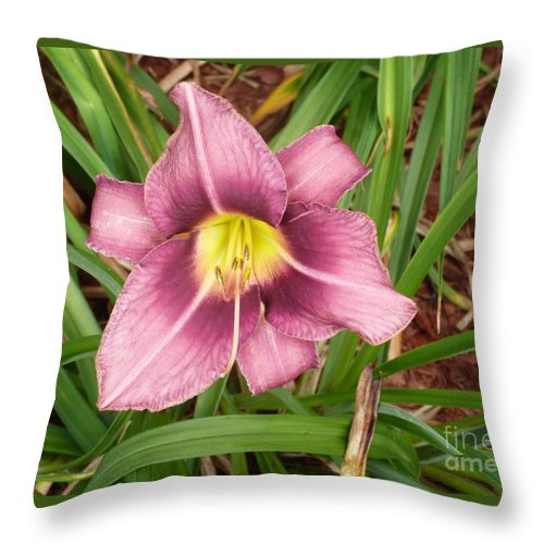 Flowers Throw Pillow featuring the photograph Daylilly by Barb Montanye Meseroll