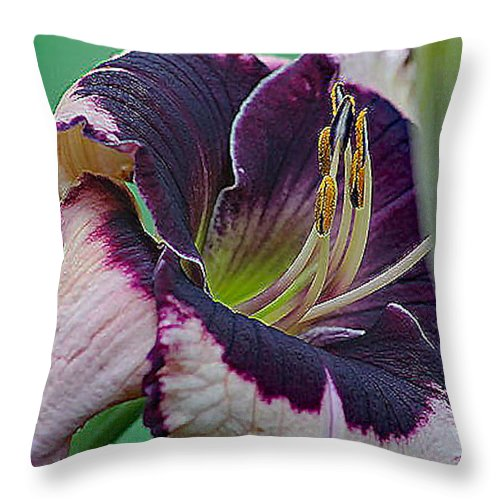 Daylily And Flowers Throw Pillow featuring the photograph Daylily Collection #12 by G Berry