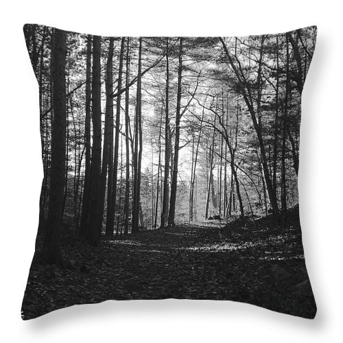 Landscape Throw Pillow featuring the photograph Days End by Michelle Sarafian
