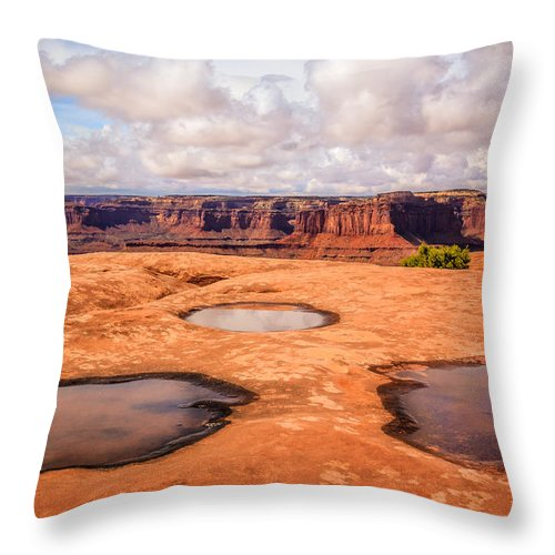 Landscape Throw Pillow featuring the photograph Dead Horse Pools by Gina Herbert