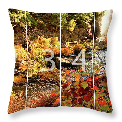 Dead River Falls Throw Pillow featuring the mixed media Dead River Falls Marquette Michigan Panoramic Map by Michael Bessler