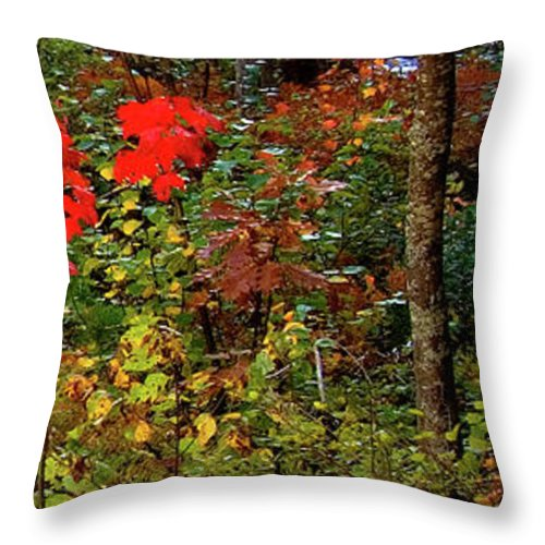 Dead River Falls Throw Pillow featuring the photograph 6 Of 6 Dead River Falls Marquette Michigan Section by Michael Bessler