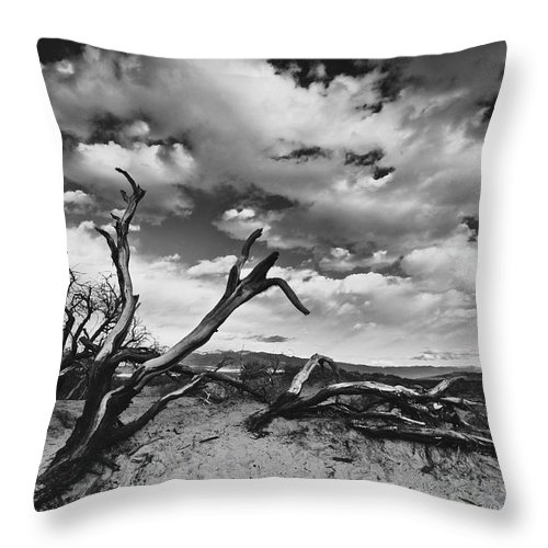 Landscape Throw Pillow featuring the photograph Dead Trees at Mesquite Dunes by Nathan Spotts
