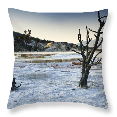 Mammoth Hot Springs Throw Pillow featuring the photograph Dead Wood Springs by Chad Davis