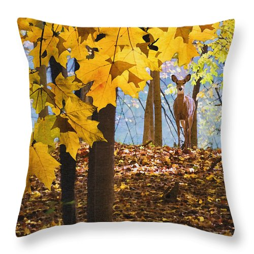 Nature Throw Pillow featuring the photograph Dear In The Sunlight by Sharon Foster