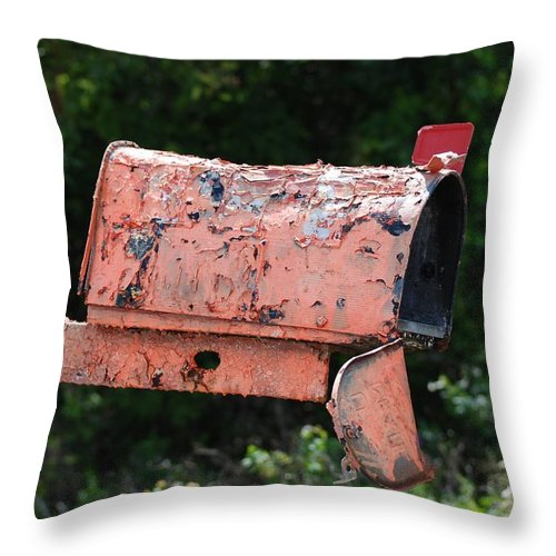 Country Scene Throw Pillow featuring the photograph Death By E Mail by Rob Hans