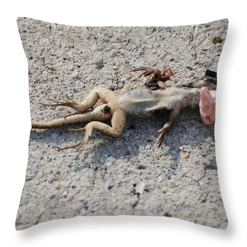 Lizards Throw Pillow featuring the photograph Death By Gum by Rob Hans