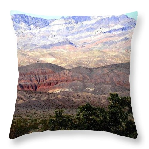 Death Valley Throw Pillow featuring the photograph Death Valley 1 by Will Borden