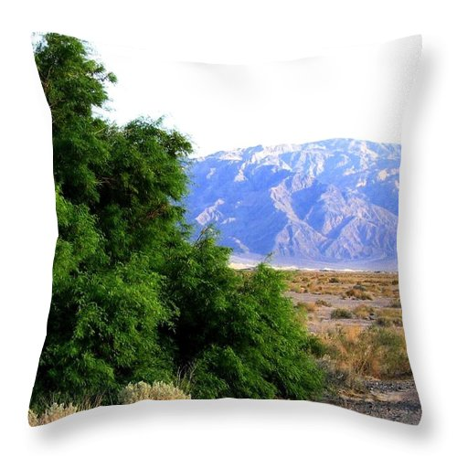 Death Valley Throw Pillow featuring the photograph Death Valley 2 by Will Borden