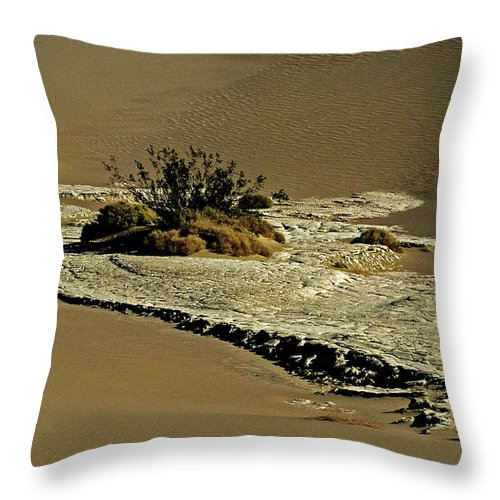 North America Throw Pillow featuring the photograph Death Valley Salt by Juergen Weiss