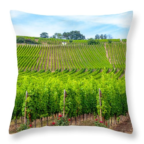 Vineyard Throw Pillow featuring the photograph Decorated Vineyards by W Chris Fooshee