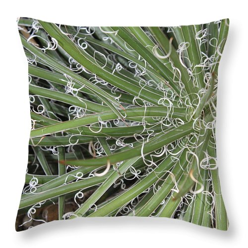 Nature Throw Pillow featuring the photograph Decorations by Munir Alawi