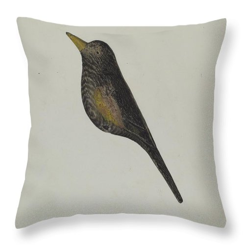 Throw Pillow featuring the drawing Decoy by Charles Garjian