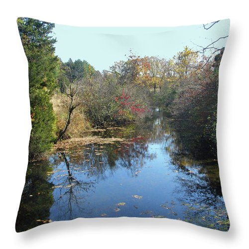 Creek Throw Pillow featuring the photograph Deep Creek - Green Lane Pa by Mother Nature