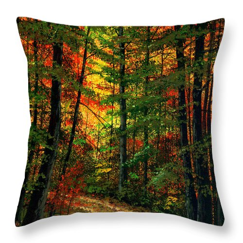 Landscape Throw Pillow featuring the painting Deep In The Forest by Frank Wilson