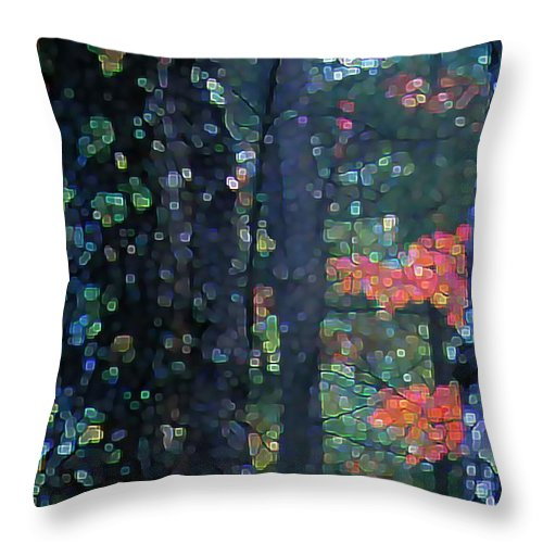 Landscape Throw Pillow featuring the digital art Deep Woods Mystery by Dave Martsolf