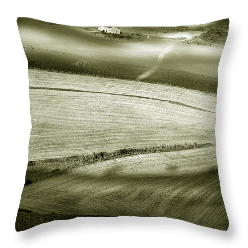 Landscape Throw Pillow featuring the photograph Deepening Shadows by Mal Bray