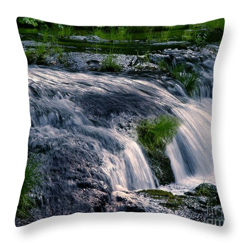 Creek Throw Pillow featuring the photograph Deer Creek 01 by Peter Piatt
