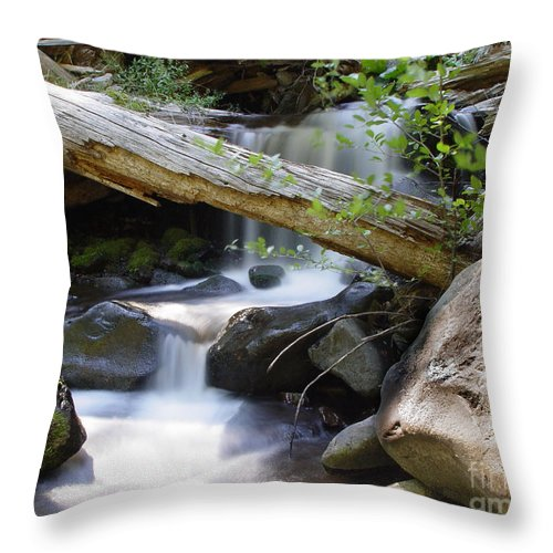 Creek Throw Pillow featuring the photograph Deer Creek 03 by Peter Piatt