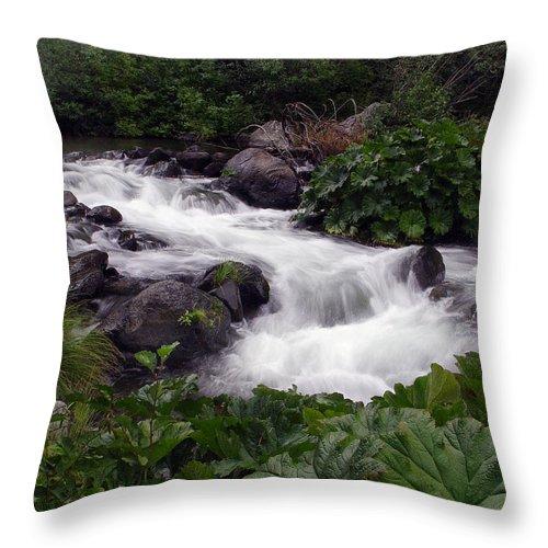 Creek Throw Pillow featuring the photograph Deer Creek 07 by Peter Piatt