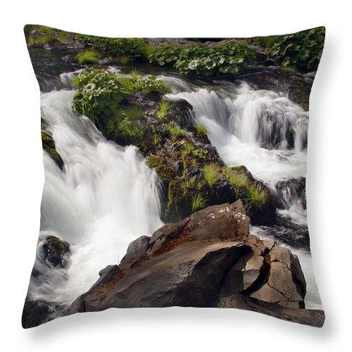 Creek Throw Pillow featuring the photograph Deer Creek 12 by Peter Piatt