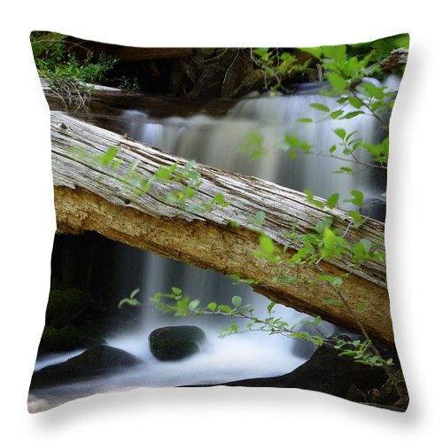 Creek Throw Pillow featuring the photograph Deer Creek 13 by Peter Piatt
