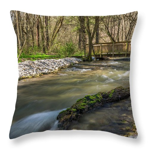 River Throw Pillow featuring the photograph Deer Creek Ia 5 by John Brueske
