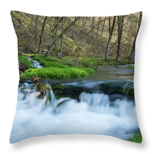 River Throw Pillow featuring the photograph Deer Creek Ia 6 by John Brueske