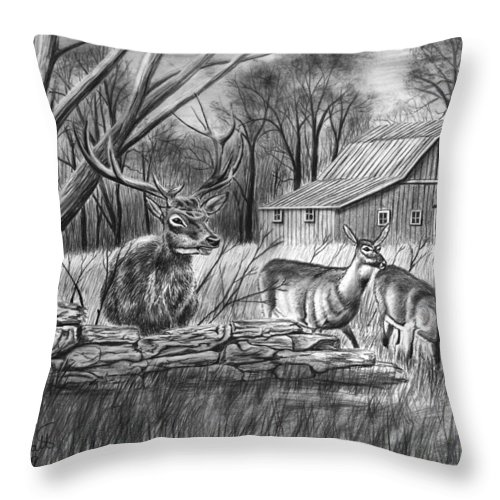 Deer Field Throw Pillow featuring the drawing Deer Field by Peter Piatt