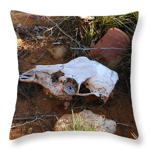 Skull Throw Pillow featuring the photograph Deer Spirit Mesa by David Lee Thompson