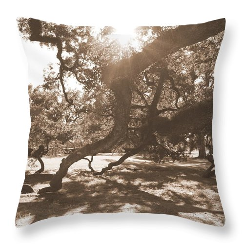 Sepia Throw Pillow featuring the photograph Defying Gravity In Sepia by Carol Groenen