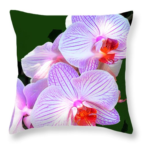 Flower Throw Pillow featuring the photograph Delicate by Ian MacDonald