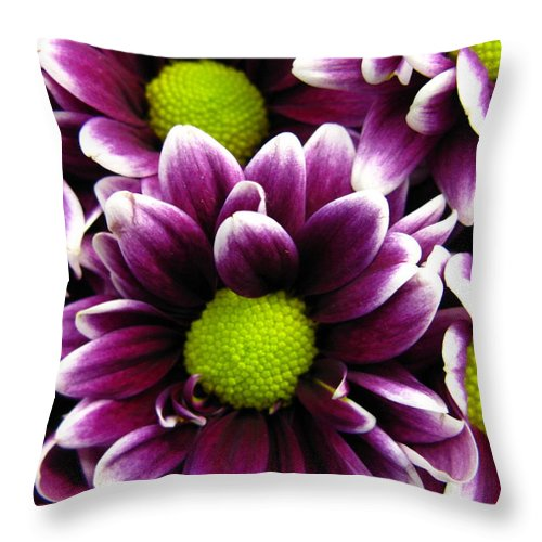 Purple Throw Pillow featuring the photograph Delicate Purple by Rhonda Barrett
