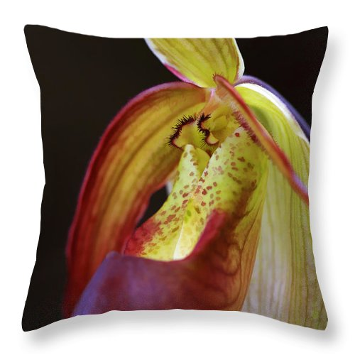Flower Throw Pillow featuring the photograph Delicate Slipper by Deborah Benoit