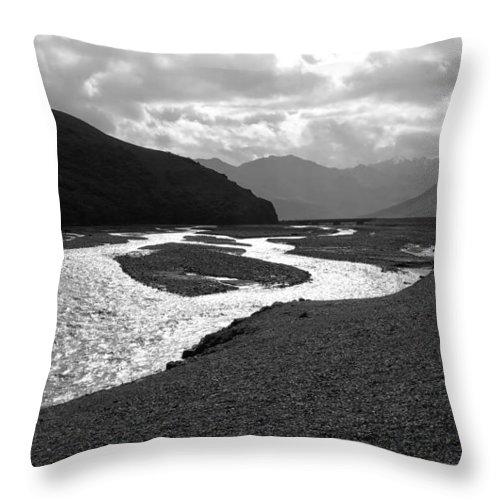 Alaska Throw Pillow featuring the photograph Denali National Park 5 by Dick Goodman