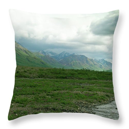 Denali Throw Pillow featuring the photograph Denali National Park Landscape 2 by Douglas Barnett