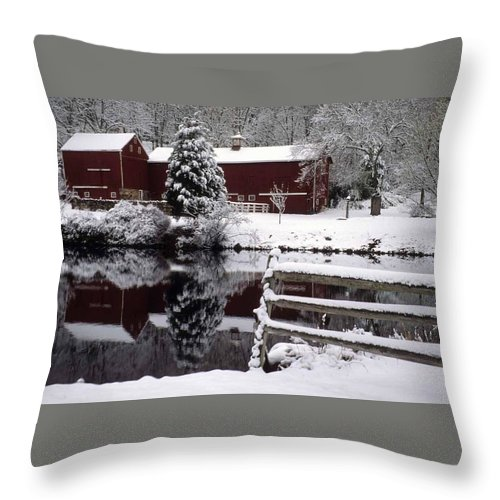 Barn Throw Pillow featuring the photograph Denville Homestead by Laurie Paci