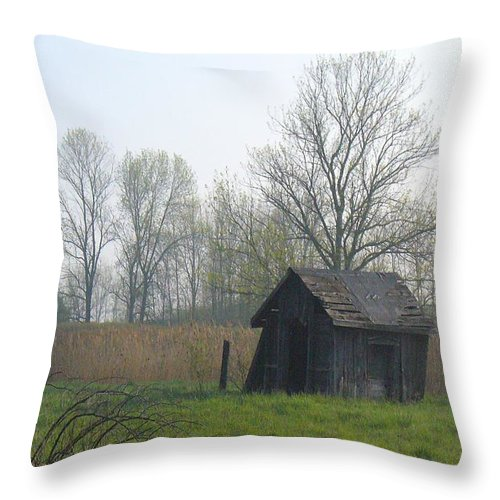 Nature Throw Pillow featuring the photograph Derelict by Peggy King