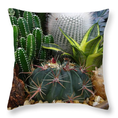 Art For The Wall...patzer Photography Throw Pillow featuring the photograph Desert Art by Greg Patzer