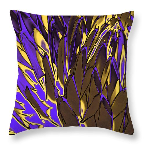 Abstract Throw Pillow featuring the photograph Desert Botanical 3 In Brown by Linda Parker