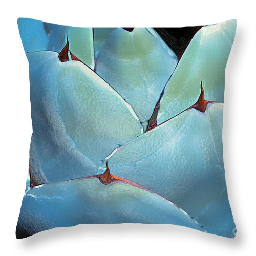 Abstract Throw Pillow featuring the photograph Desert Botanical 4 by Linda Parker