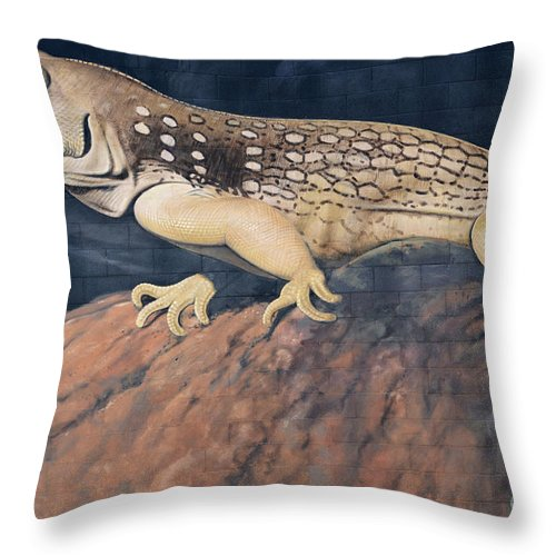 Mural Throw Pillow featuring the photograph Desert Iguana Mural by Bob Christopher
